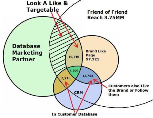 Databasemarkeitngpartnervenn